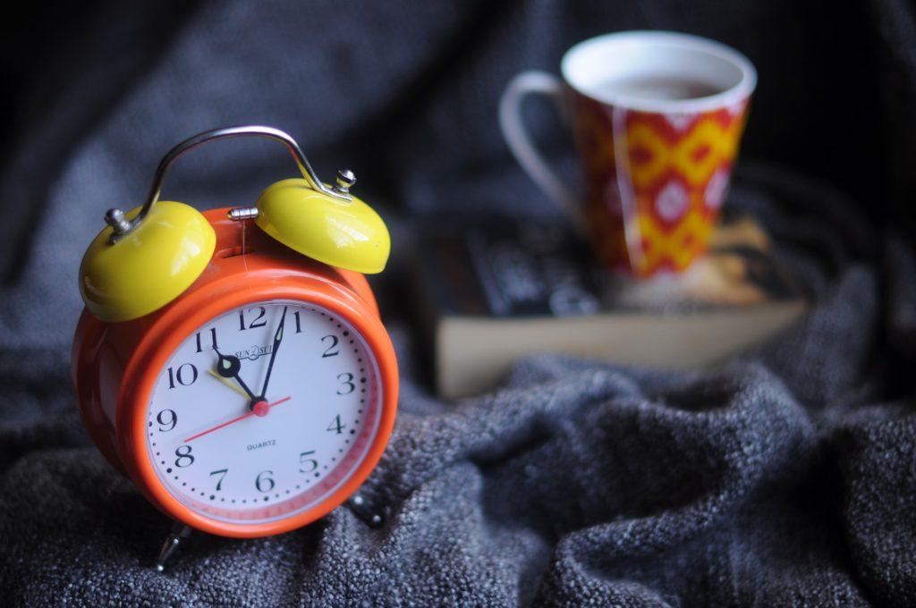 うさぎは一人暮らしでも飼えるの?時計|ラビットリンク