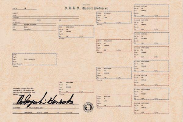 ARBA血統書