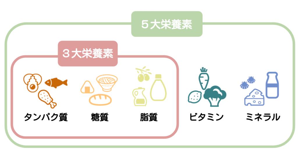 栄養素説明ーウサギの栄養学(3)不足は禁物!ウサギに繊維が欠かせない理由
