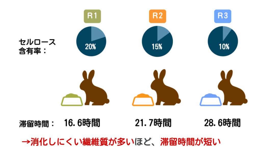繊維の量がウサギに及ぼす影響ーウサギの栄養学(3)不足は禁物!ウサギに繊維が欠かせない理由
