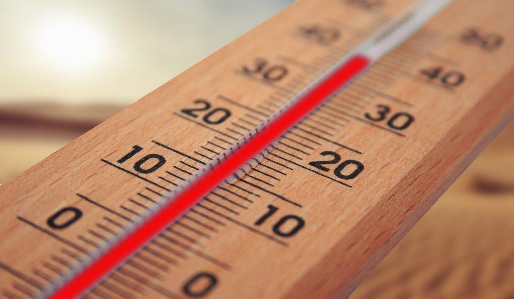 うさぎの飼い方まとめ_温度計|ウサギの適正温度(室内)