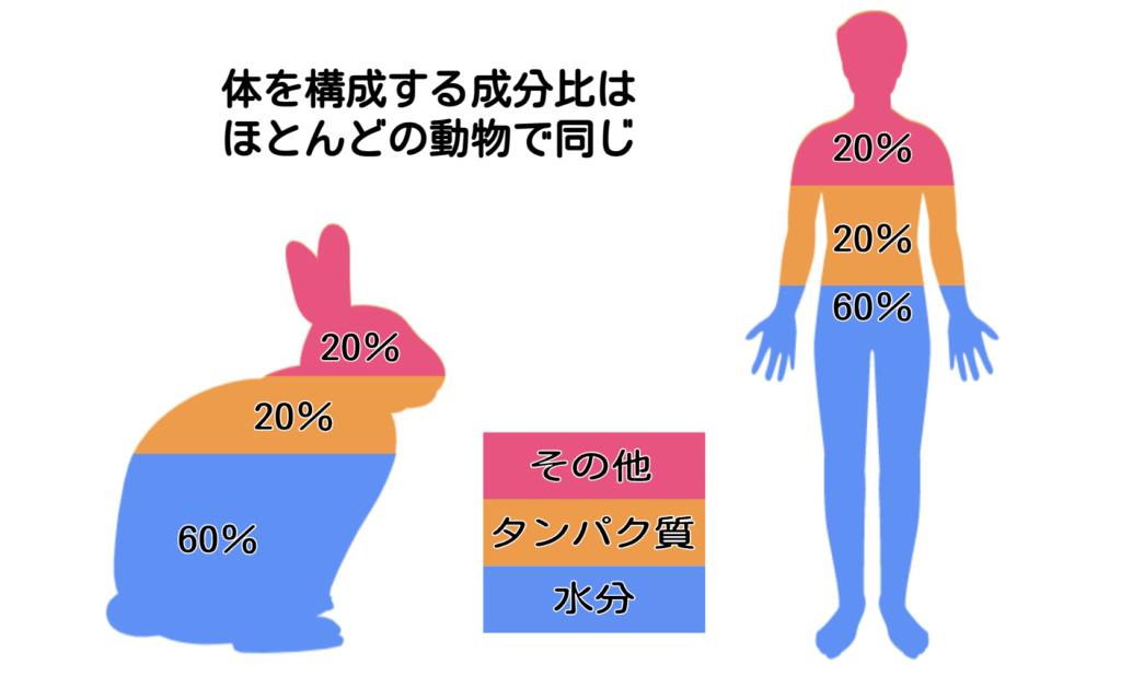 たんぱく質の構成割合/ウサギの栄養学(2)フンを食べないと生きられない!食糞の重要性とは?