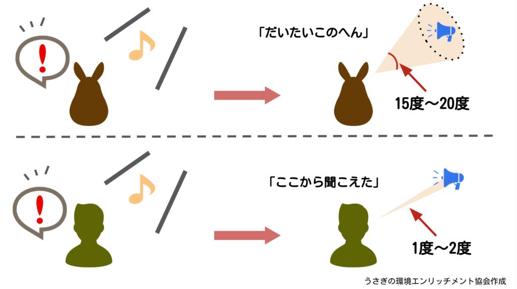 うさぎの音源定位ー動物行動学者監修 「視覚・聴覚・嗅覚」ウサギの警戒センサーの秘密を探る